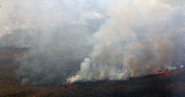 Estado cria Sala de Situação Integrada para controle e combate de queimadas