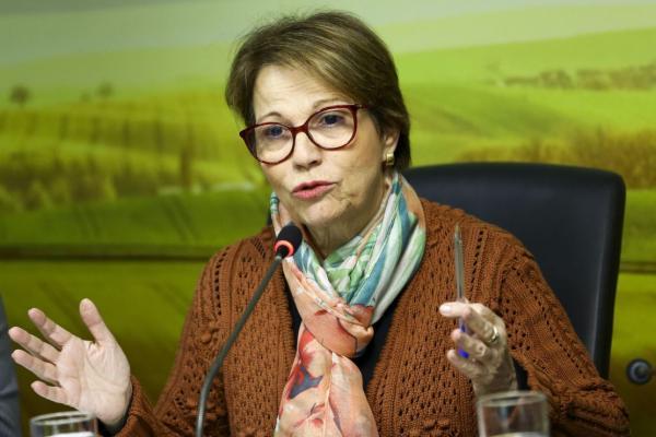 Ministra diz que relação entre agricultura e desmatamento é distorcida
