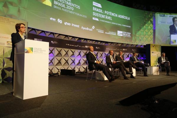 Ministra defende incremento dos investimentos privados nacionais e estrangeiros no agro brasileiro
