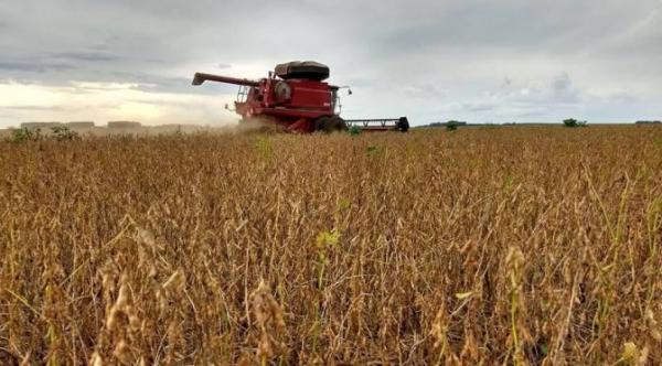Vendas externas do agronegócio somam US$ 96,8 bilhões em 2019