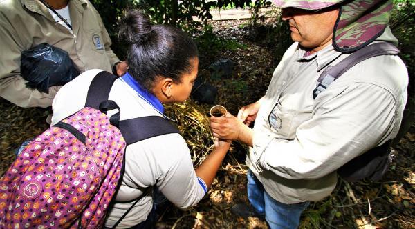 Secretaria auxilia municípios no combate a dengue em Mato Grosso do Sul