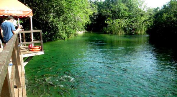 Projeto une Imasul, Ministério Público e ONG na conservação das águas de Bonito