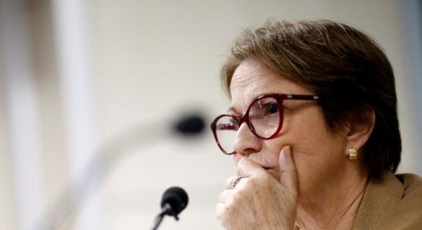 Tereza Cristina diz já discutir Plano Safra com Ministério da Economia