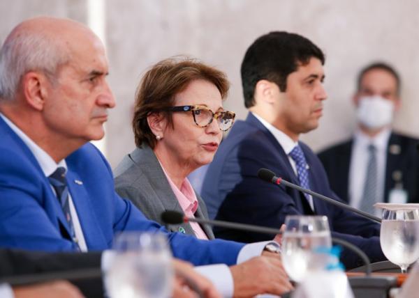 Ministra destaca trabalho do Mapa para garantir abastecimento durante a pandemia