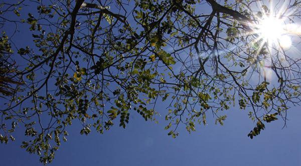 Sol predomina e máxima chega aos 33°C neste sábado