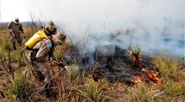 Combate aos focos de calor é um novo desafio a cada dia no Pantanal