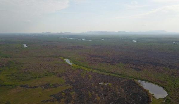 Chuva ajuda a controlar incêndios no Pantanal, mas equipes continuam alertas