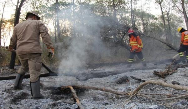 Governo reduz focos de incêndio no Pantanal de MS