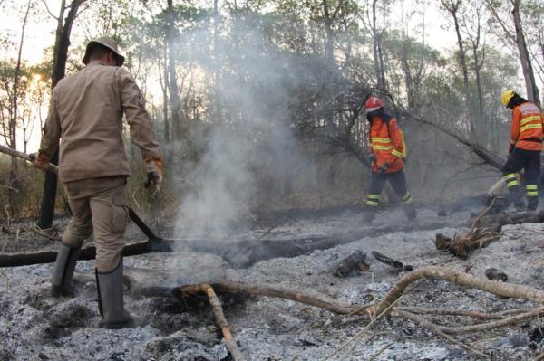 Com apoio do governo federal, MS controla focos de calor no Pantanal e Cerrado