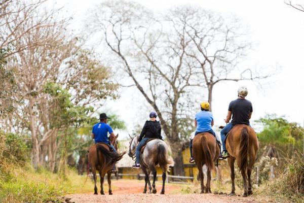 Turismo do MS participa de ação online de promoção e treinamentos
