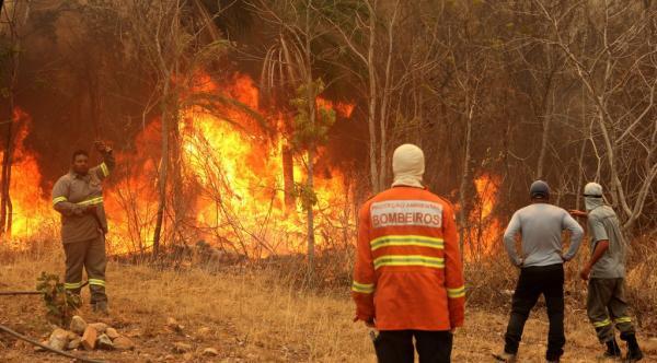 Combate às queimadas no MS ganha reforço de mais 120 brigadistas e bombeiros