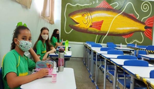 De forma remota, mais de 194 mil estudantes da REE retornam ano letivo de 2021
