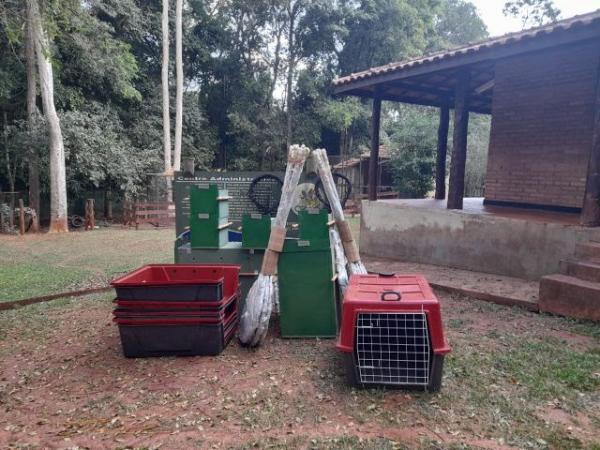 Mais preparados para salvar os animais de incêndios