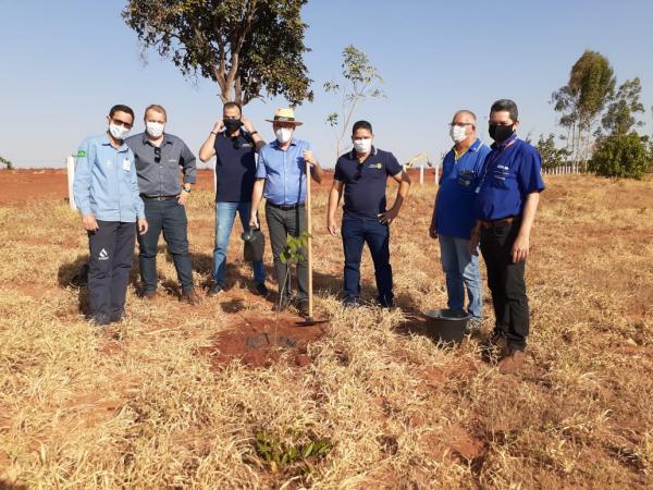 Meio Ambiente: Rotarianos realizam plantio de ipês na ETE Aporé
