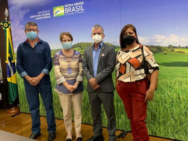 Ida de Enelto à Brasília resulta em saldo positivo para Turismo e Obras de Sonora