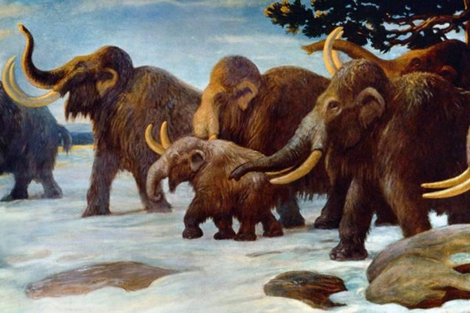 Cinco animais extintos que a ciência quer trazer de volta
