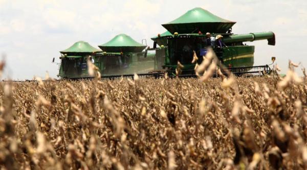 Plano Safra libera recursos a partir de 1º de julho para produtores rurais com taxa de juros menor
