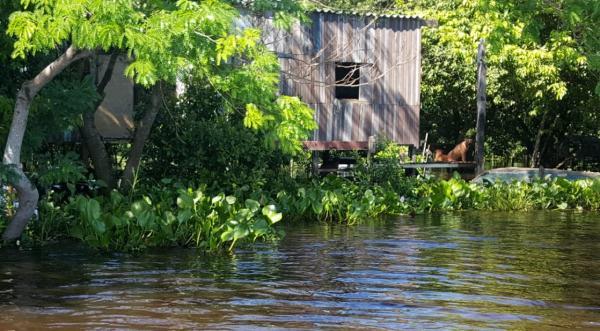 Governo declara emergência em Corumbá devido à cheia no Pantanal; inundações afetaram 2,5 mil pessoas
