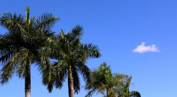 Previsão para semana é calor e tempo seco no Estado de MS