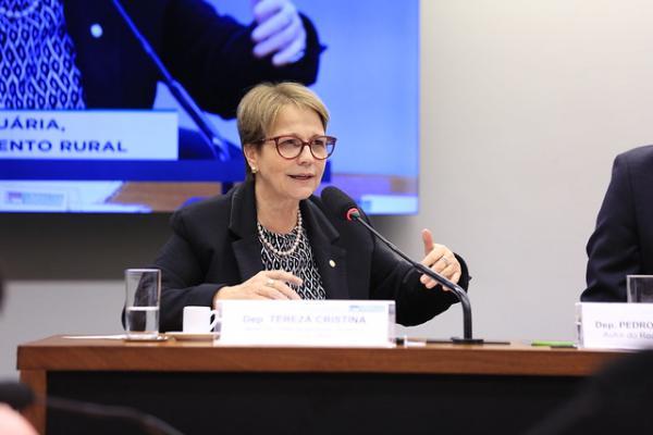 Na FAO, ministra defende fim do protecionismo dos países desenvolvidos